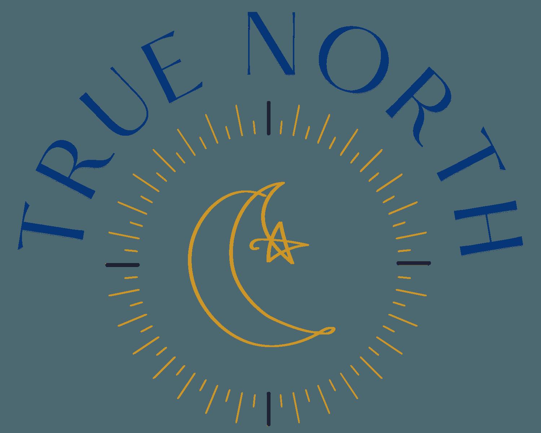True North Ottawa Mediation, Child-Centered Case Consultations for Families Logo